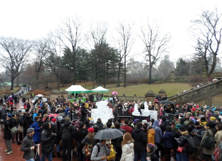 Central Park Ice Festival January