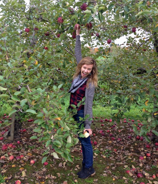 apple picking fall