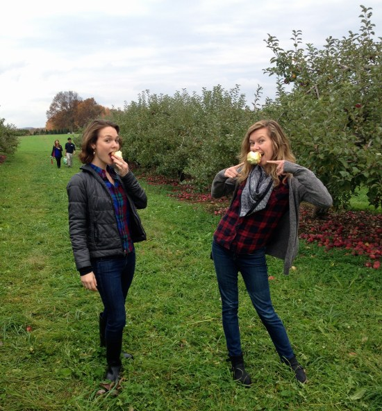 apple orchard apple picking