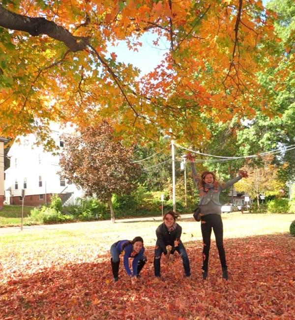 fall foliage frolick