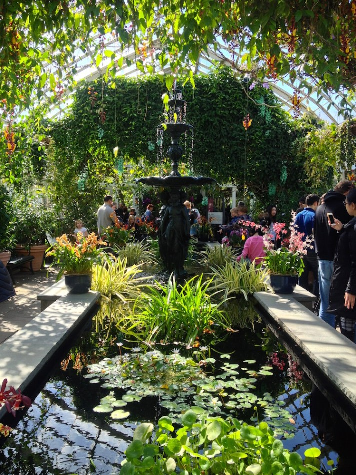NYBG_Orchid_Show_fountain