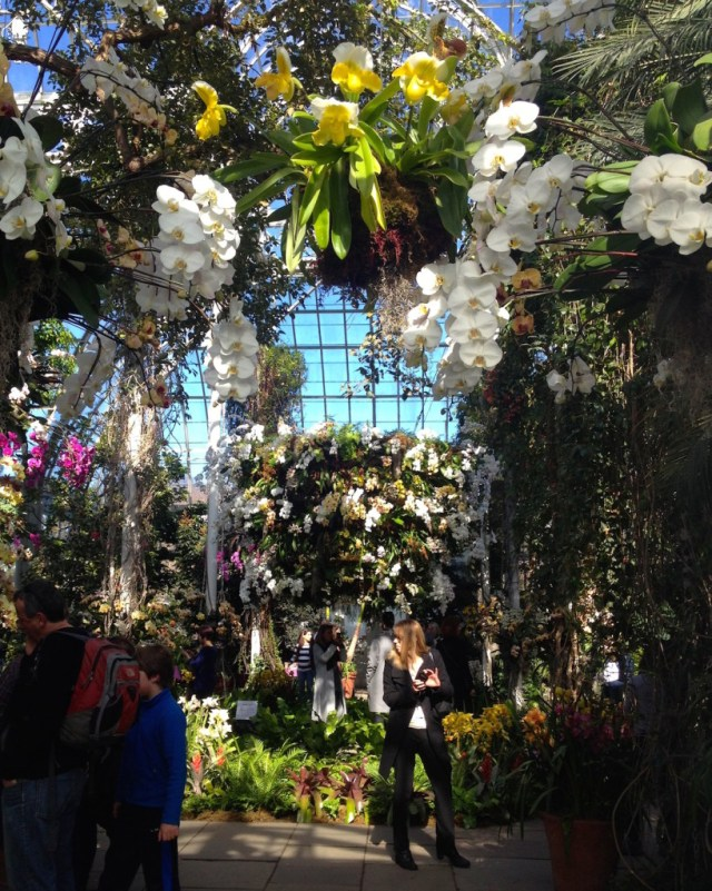 NYBG_Orchid_Show