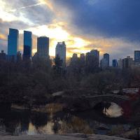 centralpark-sunset
