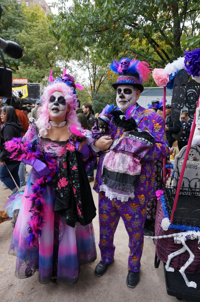 dog_parade_dayofthedead