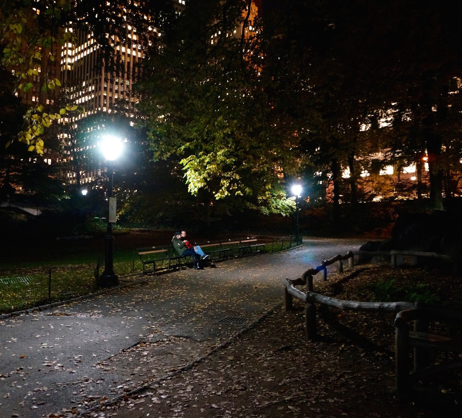 Central Park Nyc: A Walk In The Dark In Central Park