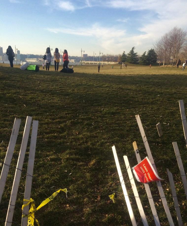 spring-fever-fence