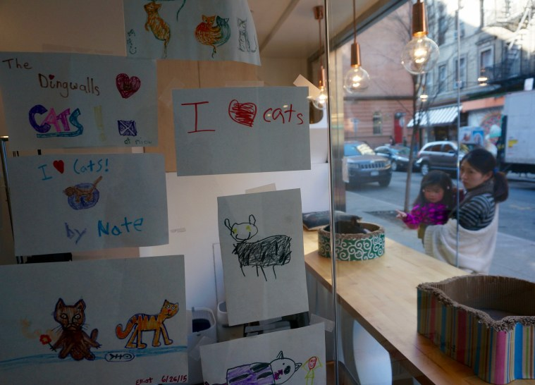 meow-parlour-i-love-cats