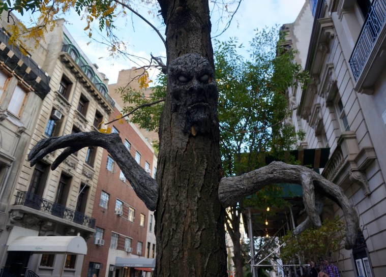 halloween-nyc-scary-tree