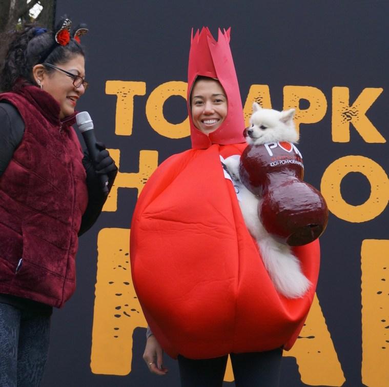 halloween-dog-parade-pom