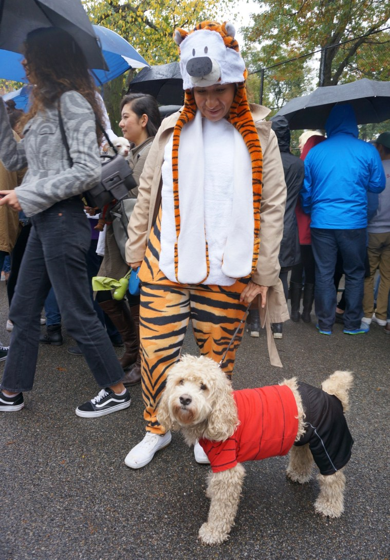 halloween-dog-parade-calvin-and-hobbes