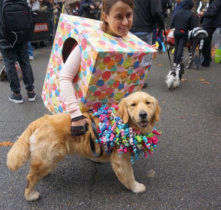 halloween-dog-parade-present