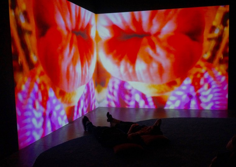pipilotti-rist-new-museum-screens