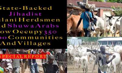 Herdsmen problem in Nigeria