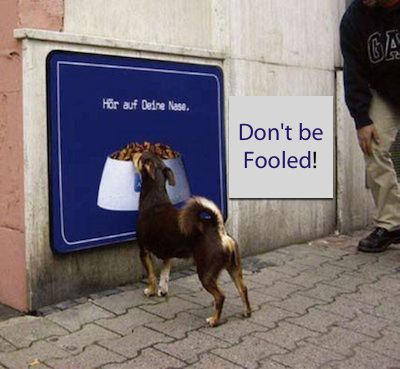 This is an image of a dog being fooled by a sign...Don't be fooled by a fake parking sign