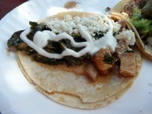 taco chicken chipotle