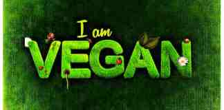 unique Vegan Dishes