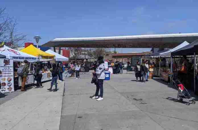 bronx food market