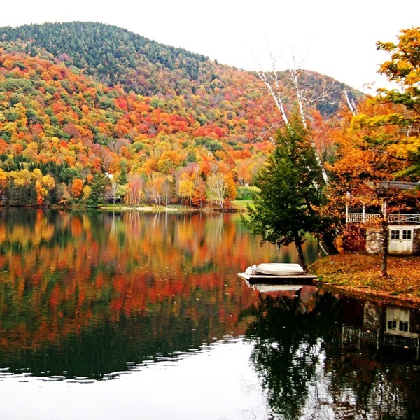 Fantastic Fall: The Best States To Visit in Autumn