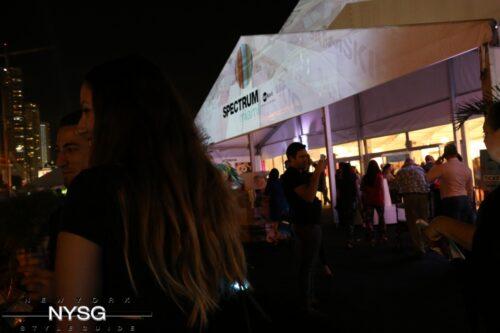 Spectrum Miami Art Show in Pictures 39