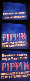 Pippin Marquee