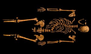 Richard III's skeletal remains