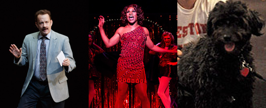 Tom Hanks in Lucky Guy, Billy Porter in Kinky Boots, Porridge the dog in Pippin.