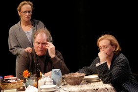 The Apple Family plays at Public Theater