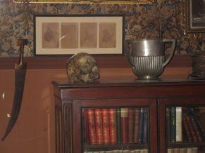 longer view of the skull