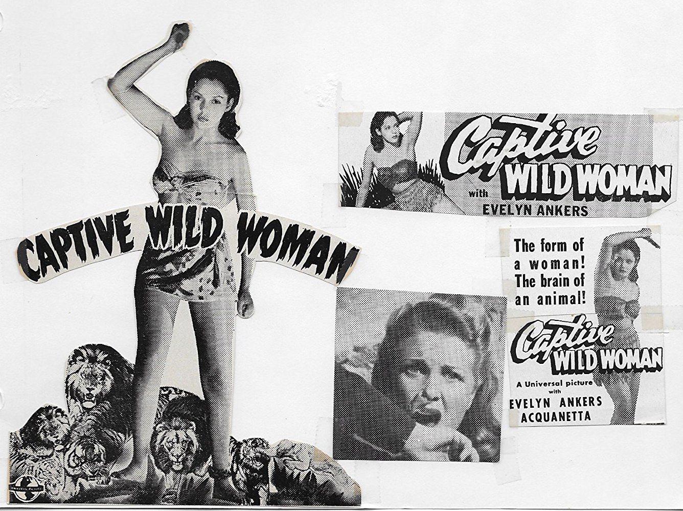 """a poster for the 1943 movie """"Captive Wild Woman,"""" co-starring Acquanetta."""