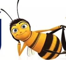 theater bee