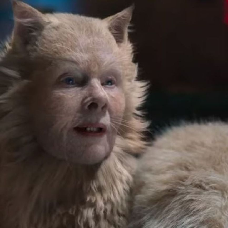 Judy dench in cats trailer