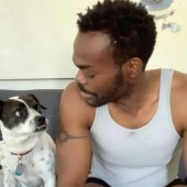 """""""Don't Look Back"""" by Stephen Adly Guirgis, performed by William Jackson Harper (and his dog) from 24 Hour Plays' Viral Monologues online series"""