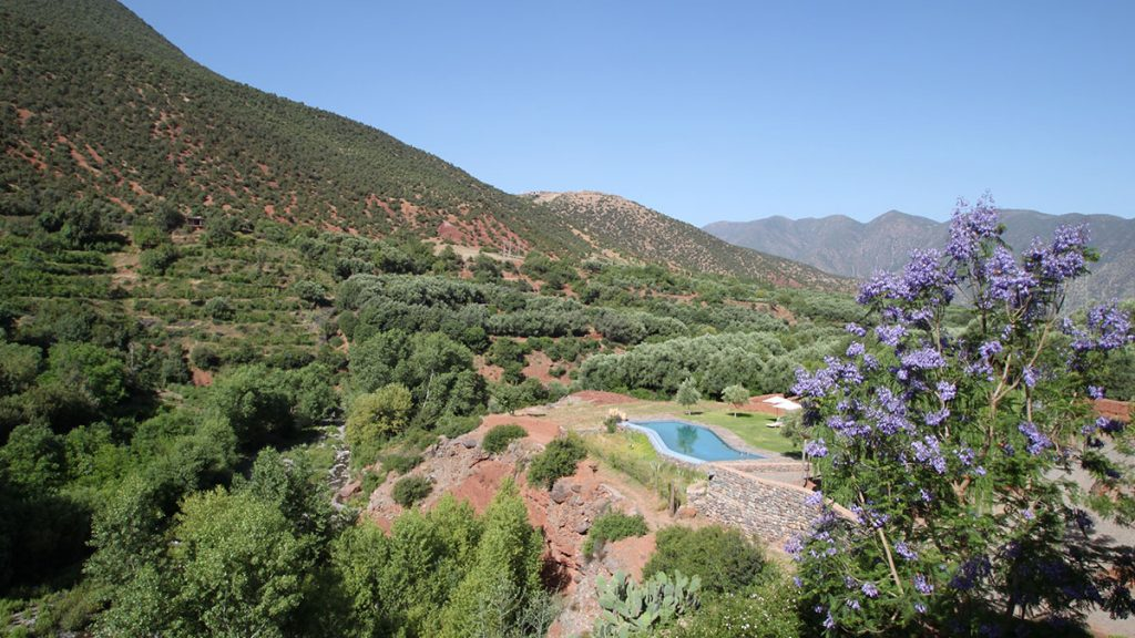 Pool Overlooking Atlas Mountains