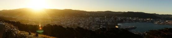 Panorama über Wellington