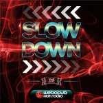 """LE """"SLOWDOWN RIDDM"""" A VU LE JOUR 8"""