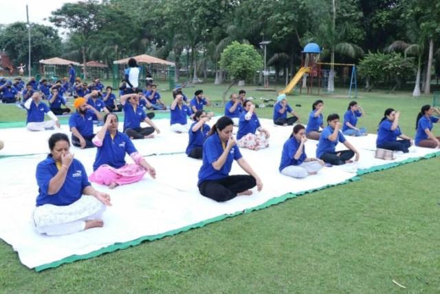 Verka Celebrates International Yoga Day