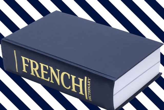 Best French English Dictionary  Apps for Android