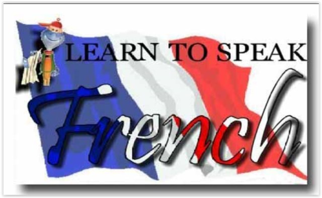Top 7 Best French Language Learning Apps for Android