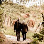【家賃収入で年金が減らされるのか】マンション経営による年金対策について