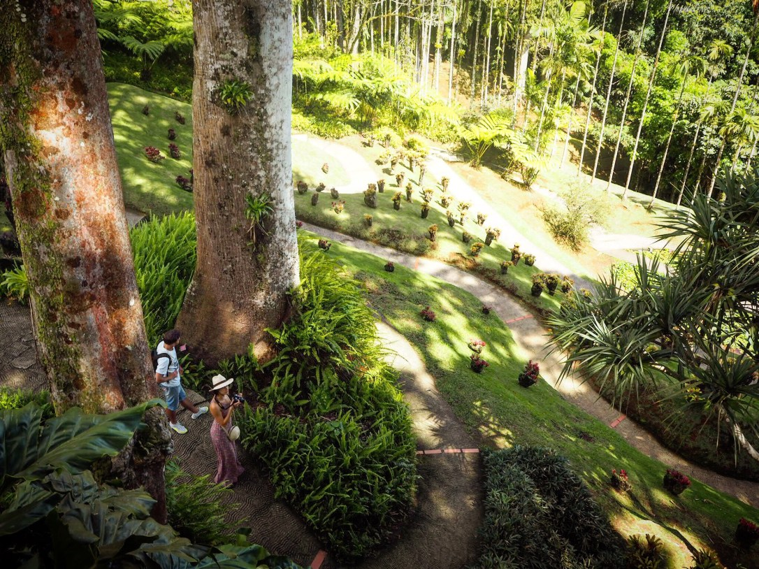 People walking in the garden, seen from above