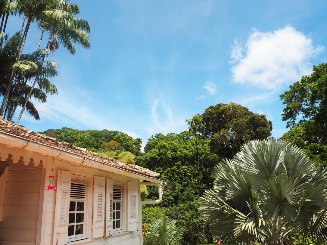 A quaint creole cottage in Martinique