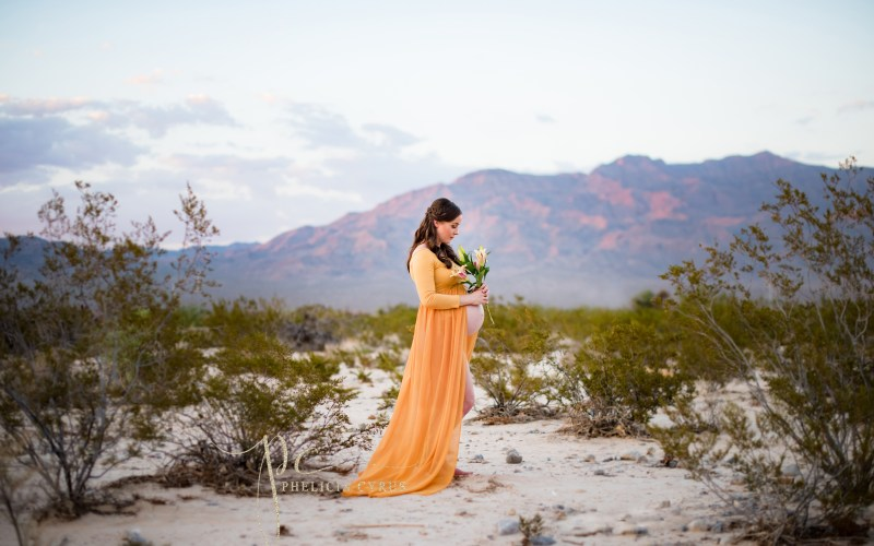 Gorgeous Desert Maternity Session in Las Vegas