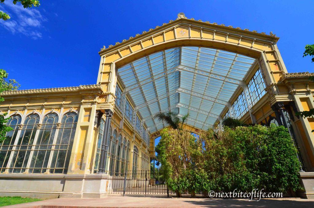 glass building in el born barcelona
