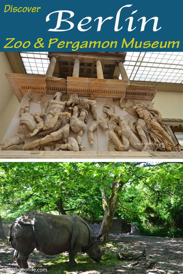 Berlin zoo and Pergamon Museum Visit #mustvitiberlin #visitberlin #pergamon #berlinzoo #berlinguide #mustseeberlin #berlin #germany