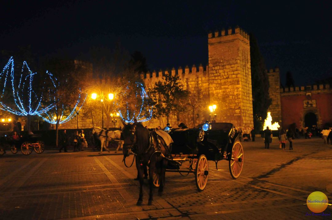 Horse drawn carriage rides in seville spain