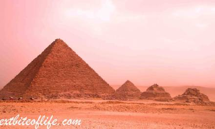 24 Hours In Cairo from Hurghada Guide ( Superb Private Tour)