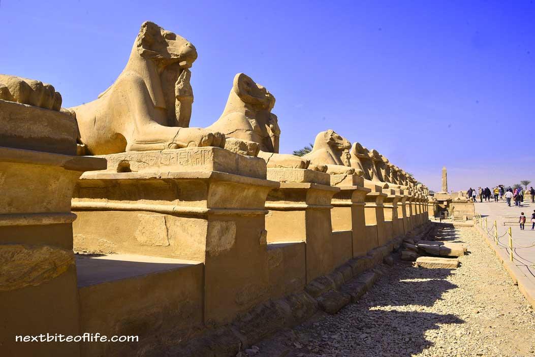 alley of the ram-headed sphiinges in Luxor Karnak temple