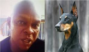 Court Frees Iroko, Man Who Named Dog Buhari