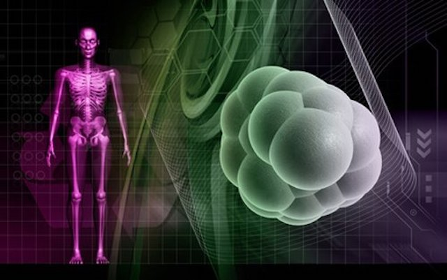 New clues found to fight cancer