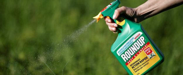 Foreign Titbits:   Chemical giant Monsanto to pay $289m damages in Roundup cancer trial